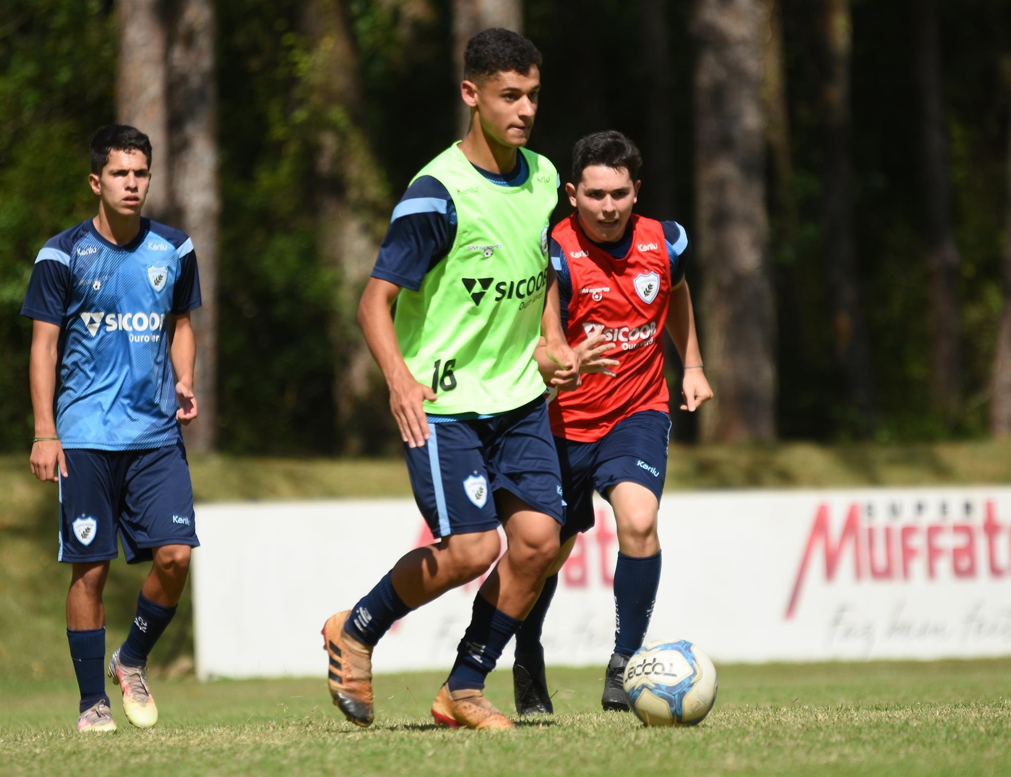 Sport x Londrina: Informações e dados